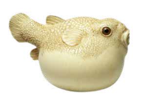 Fugu fish netsuke